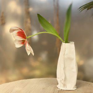 'ואזה' אמנותית | Sculptured Vase