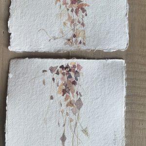 טְרִיפְּטִיך |  Sweetheart Vine Fall Triptych